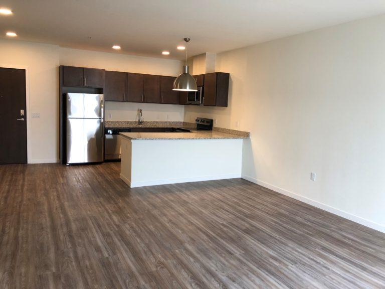 Element 84 Living Kitchen 1
